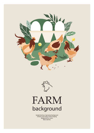 Sample brochure. Agricultural background. Chickens and rooster. Poultry keeping.