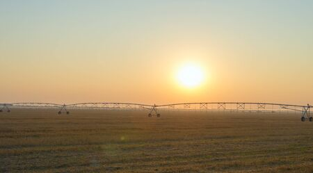 irrigation field: Field with irrigation system at sunset Stock Photo