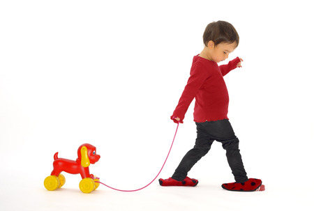 developement: girl who pulls her dog toy on wheel Stock Photo
