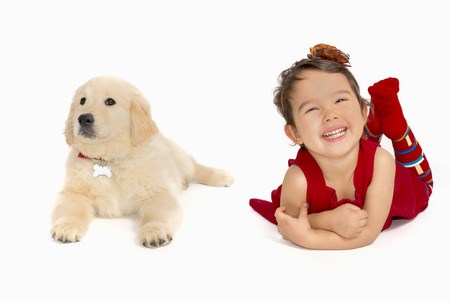 dog grooming: little girl with a Golden retriever puppy