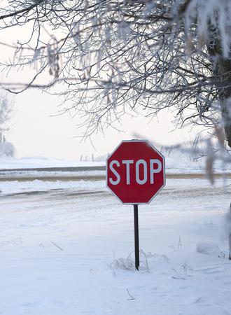climatology: traffic sight at snow