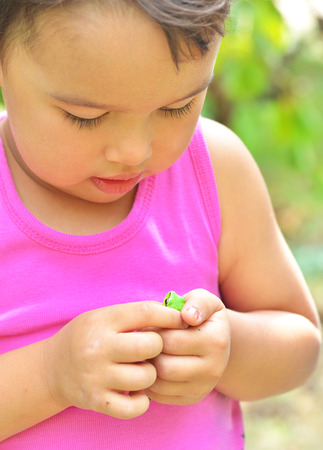tiny frog: Tiny frog on hands