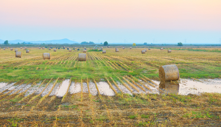 hayroll: sunset over farm field with hay bales Stock Photo