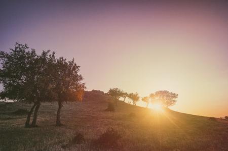 Sunset in hills landscape