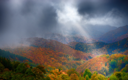 Beautiful view of colorful trees and cloudy sky Standard-Bild - 110837754