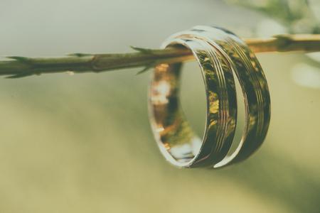 Wedding gold rings, on beautiful green plant Standard-Bild - 110837759