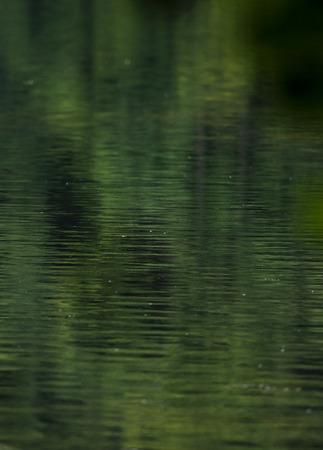 Green water gloss