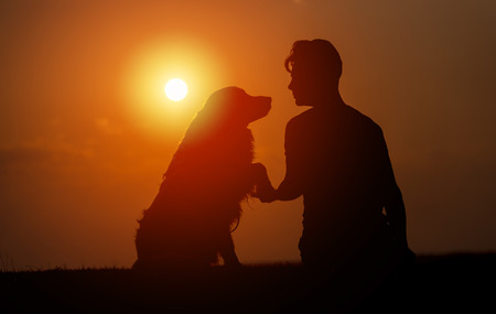 young man is sitting outside training his pet dog, and shaking hands on a summer evening, silhouetted by the sunset in the sky