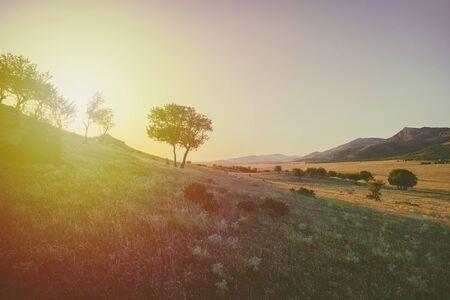 hill at sunset Stock fotó