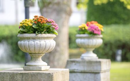 concrete flower stand in the yard