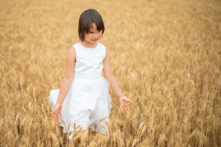 Cute little girl playing on wheat field 版權商用圖片 - 155221684