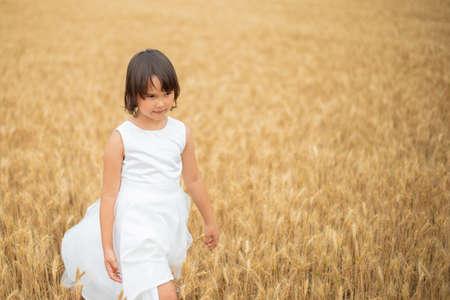 Cute little girl playing on wheat field 版權商用圖片