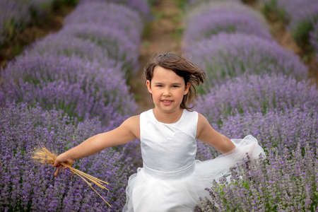 Front view of a beautiful little girl enjoying and running between rows of blooming lavender