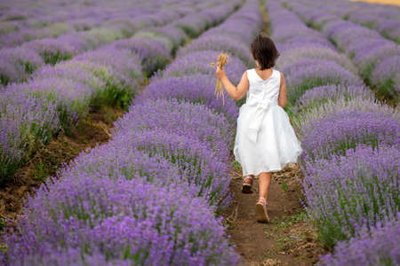 Back view of a beautiful little girl enjoying and running between rows of blooming lavender 版權商用圖片