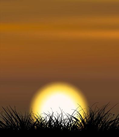 Hintergrund zur Veranschaulichung Sonnenuntergang mit der Gras-Form in der front