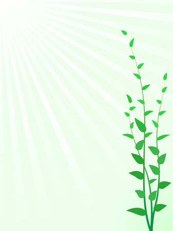 the sprouting: Abstract green sprouts vector background with copyspace