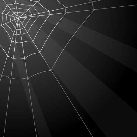 Dark vector background with spider web in the corner. Vector
