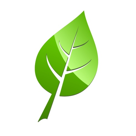 high detail: Green leaf symbol isolated on white background illustration.