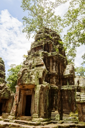Ancient Ta Prohm or Rajavihara Temple  at Angkor, Siem Reap, Cambodia  Stock Photo - 14968971