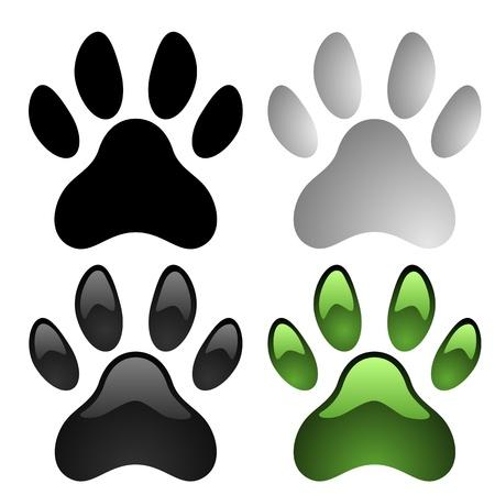 paw print: Impresiones de la pata conjunto aislado sobre fondo blanco Vectores
