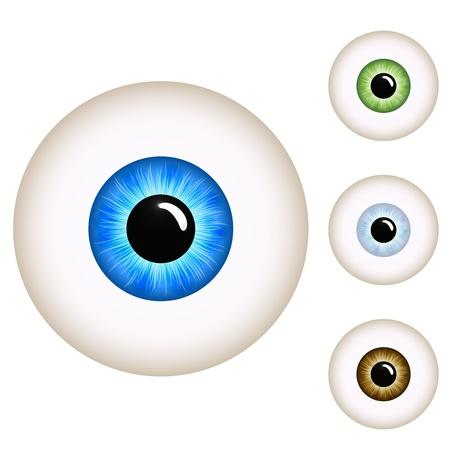 cornea: Occhio umano con varianti di colore isolato su sfondo bianco.
