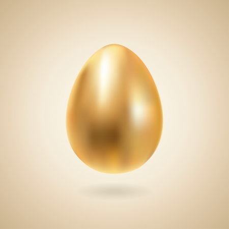 Golden egg realistic illustration  Vector