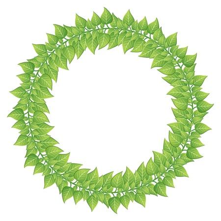 bordering: Hojas verdes de marco redondo aislado en blanco