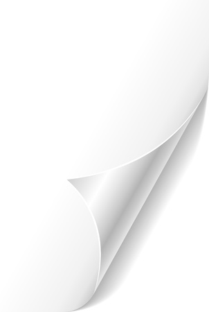 White curled paper page corner template  Illustration