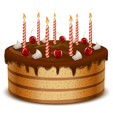 Birthday cake with candles isolated on white background vector illustration  Vector