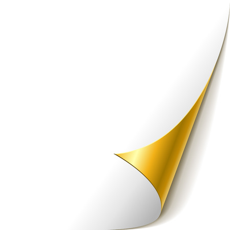 leaf curl: White paper with golden rolled corner vector template.