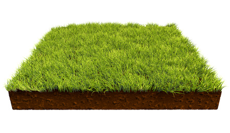 grass land: Square piece of land with green grass isolated on white background. 3D illustration.
