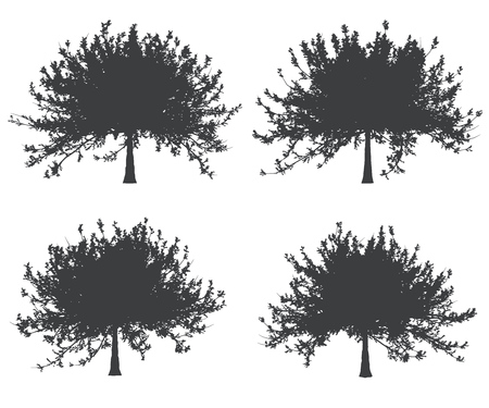 wooden cut: Black and white single tree shapes set. Vector illustration.