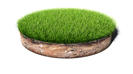 Round green grass land piece isolated on white background. 3D illustration.