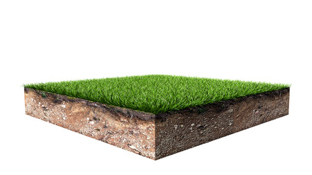 Green Square Grass Land Piece Isolated on White Background. 3D Illustration. Banque d'images