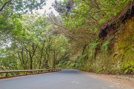 Road through Anaga national park, Tenerife, Spain. Stock Photo