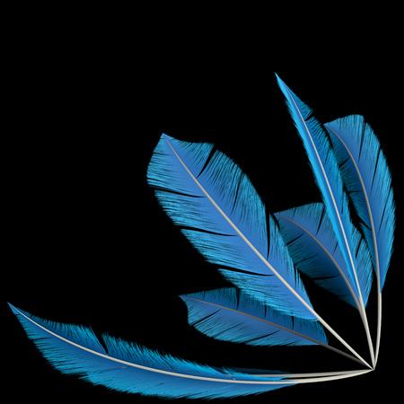 Blue Birds Feathers Corner Decoration Element on Black Background. 3D Illustration.