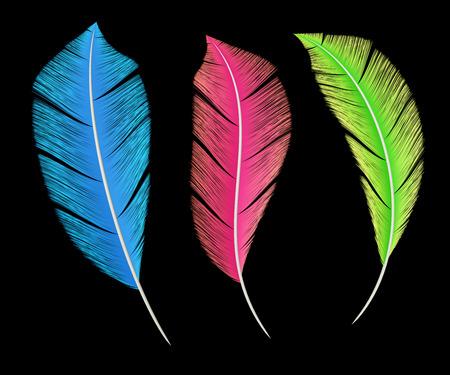 Colorful Birds Feathers Decoration Elements on Black Background. 3D Illustration. Imagens
