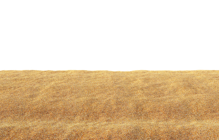 Yellow Sand Summer Background with White Copy Space. 3D Illustration.