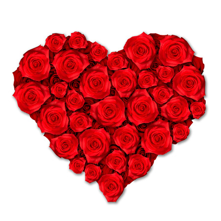 Red Roses Heart Shape Isolated on White Background. Love Concept. Reklamní fotografie