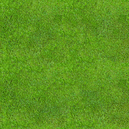 Bezszwowa Zielona Bujna Trawa Tekstura. Świeże tło. Zdjęcie Seryjne