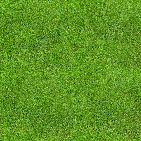 Seamless Green Lush Grass Texture. Fresh Backdrop. Banco de Imagens