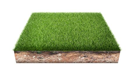 Green Grass Land Piece Isolated on White Background. 3D Illustration. Banque d'images