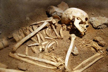 esqueleto humano: excavaci�n: descansa de huesos humanos