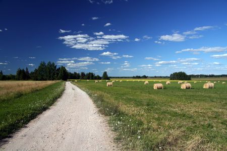 Landscape with blue sky and white clouds Stock Photo - 516949