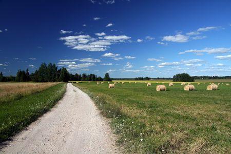 Landschap met blauwe lucht en de witte wolken