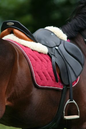 Riding Saddle photo