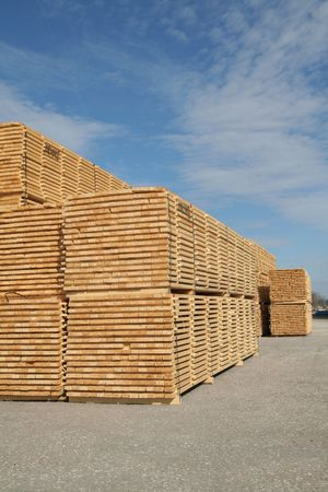 Piles of pine planks stacked for drying Stock Photo - 865048