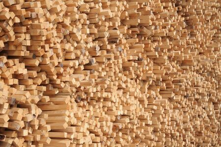 A huge pile of pine wood sticks  Stock Photo - 961246