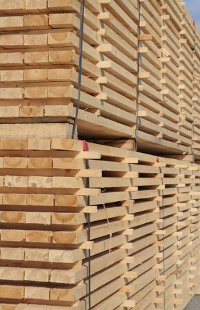 Piles of pine planks stacked for drying Stock Photo - 961247