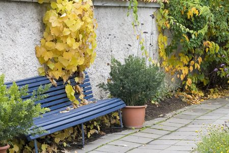 clearing the path: Empty blue park bench by the wall Stock Photo